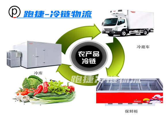 冷链物流,冷藏运输,冷链仓储,上海冷链物流公司,上海零担冷藏运输专线
